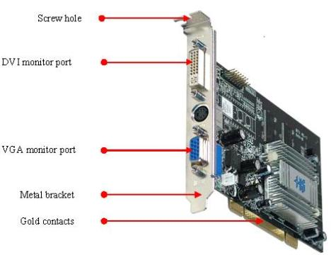 Video Card Integrated2